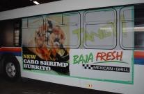 Baja Bus
