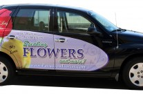 Speaking Flowers Partial Wrap