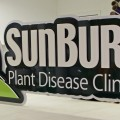 Sunburst Plant Disease Clinic Dimensional Sign