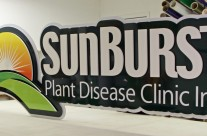 Sunburst Plant Disease Clinic Dimensional Sign